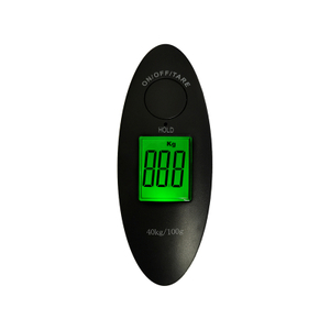 Mini Electronic Gift Pocket Digital Luggage Scale